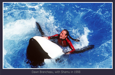 SeaWorld, Dawn Brancheau and Shamu in 1998
